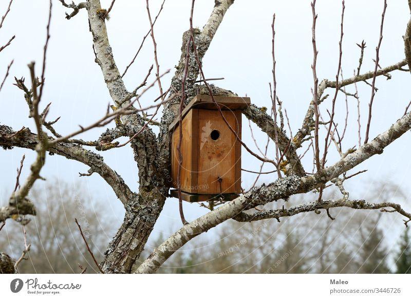 Am Baum hängendes Vogelhaus mit dem kreisförmigen Eingangsloch Futterhäuschen Kasten Haus Golfloch klein Tier Hintergrund Ast niedlich Lebensmittel Wald Garten