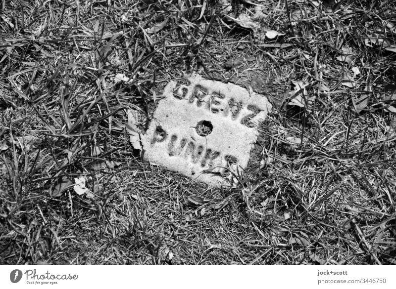 Grenzpunkt genau hier im Gras Schwarzweißfoto Natur Wiese Außenaufnahme Stein Geometrie Kreis Schilder & Markierungen Quadrat Strukturen & Formen Landvermessung