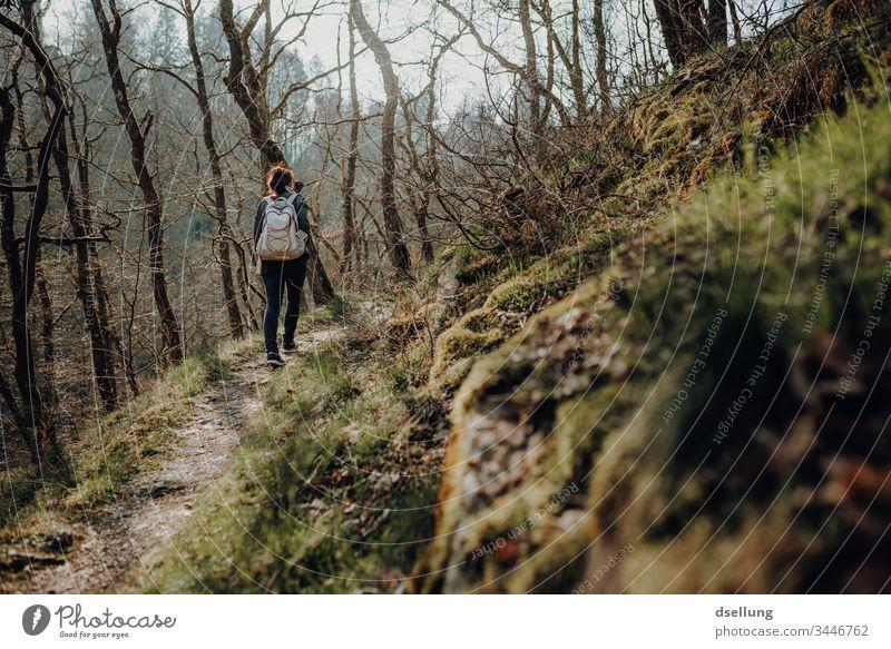Junge Frau geht wandern im Wald Wellness Expedition Tag Ferne Camping harmonisch gehen Schatten allein Wohlgefühl Ziel Pfad Zufriedenheit Erholungsgebiet