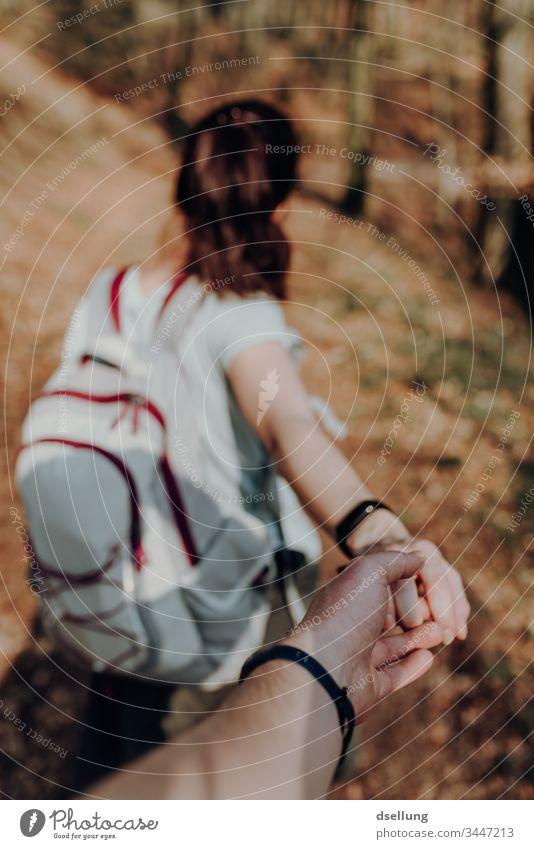 Junges Paar geht wandern im Wald und hält sich an den Händen Wellness Expedition Tag Ferne Camping harmonisch gehen Schatten allein Wohlgefühl Ziel Pfad