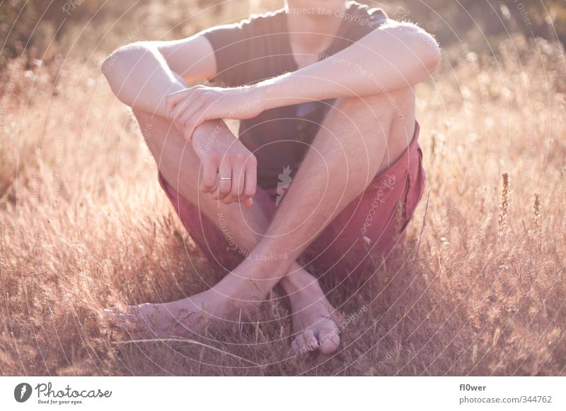 chill in the sun Mensch Jugendliche Sommer Erholung Junger Mann Erwachsene 18-30 Jahre gelb Liebe Gras Junge Fuß Körper gold Arme sitzen