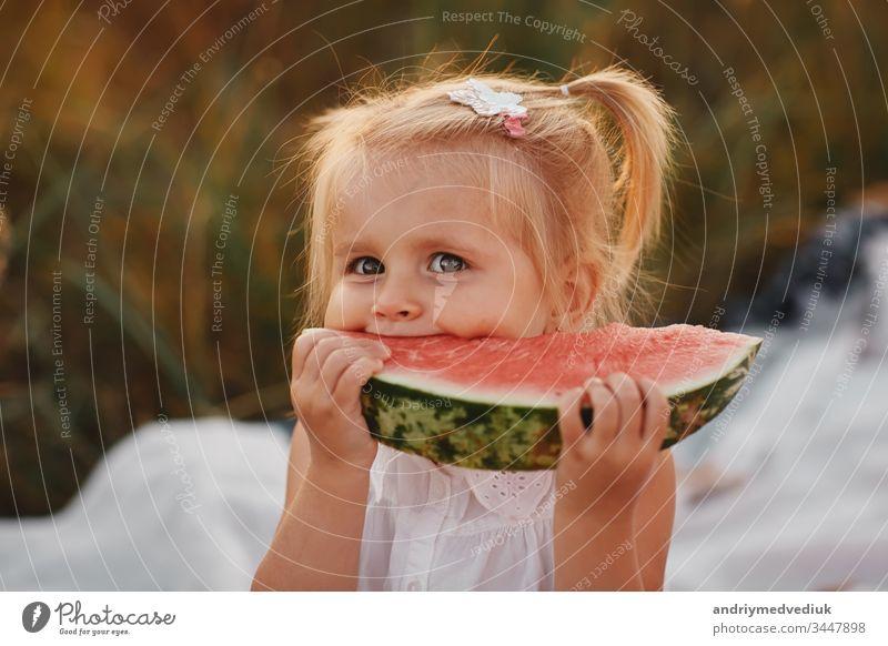 Lustiges Porträt eines unglaublich schönen rothaarigen kleinen Mädchens, das Wassermelone isst, einen gesunden Fruchtsnack, ein bezauberndes Kleinkind mit lockigem Haar, das an einem heißen Sommertag in einem sonnigen Garten spielt.