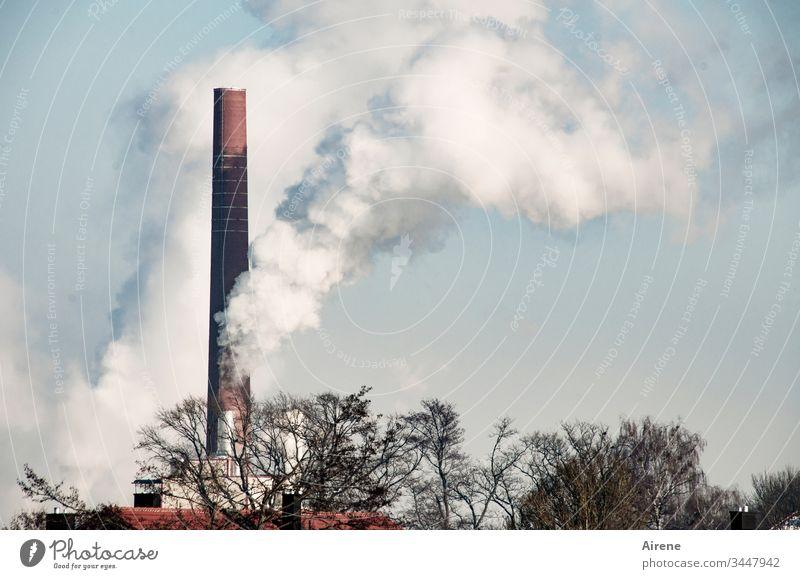 Klimawandel | Papierfabrik arbeitet auf Hochtouren Tag Energie Umweltverschmutzung Rauchen Abgas Schornstein Menschenleer weiß Industrieanlage fabrikschornstein