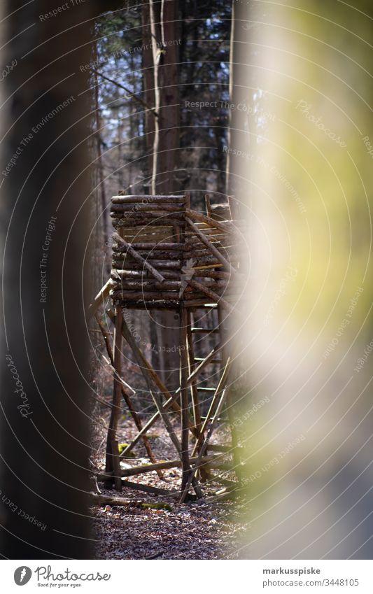 Jägersitz Jägerstand Wald Jagd Jagdrevier Jagen Natur Wildschwein dammwild Wildtier Wildnis