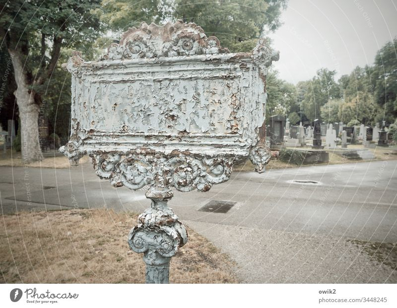 Wegweiser Friedhof Gräber Schild alt historisch verrostet Zahn der Zeit Metall Verzierung Ornament Schnörkel Straße Asphalt Bäume Vergänglichkeit Vergangenheit