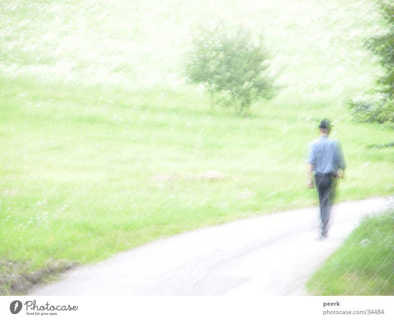 Der Bauer geht nach Hause Bayern Wiese grün Wege & Pfade Landschaft Landwirt