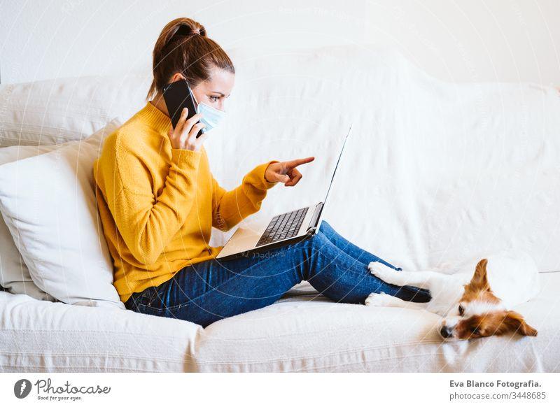 """junge Frau, die zu Hause am Laptop arbeitet, auf der Couch sitzt und eine Schutzmaske trägt. Daneben ein süßer kleiner Hund. Konzept """"Bleib zu Hause"""" während Coronavirus covid-2019"""