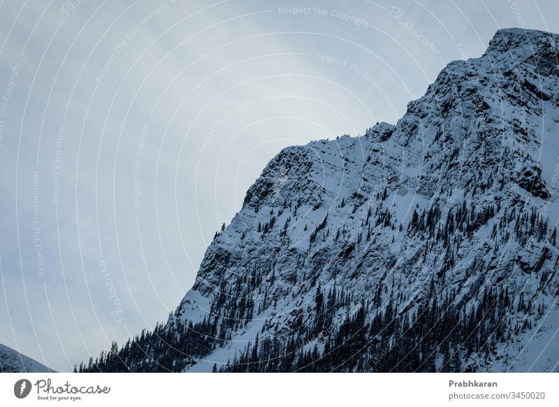 Berg in. Banff Berge u. Gebirge Schnee Winter Kanada Alberta Nordamerika Farbe Landschaft Banff National Park malerisch