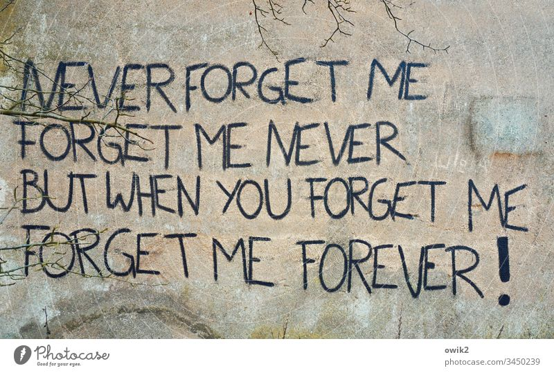 Keine halben Sachen Wand Mauer alt Putz Buchstaben Schriftzeichen Großbuchstaben Schriftstück englisch Spruch Liedzeile Songtext Liebeslied vergessen Trennung