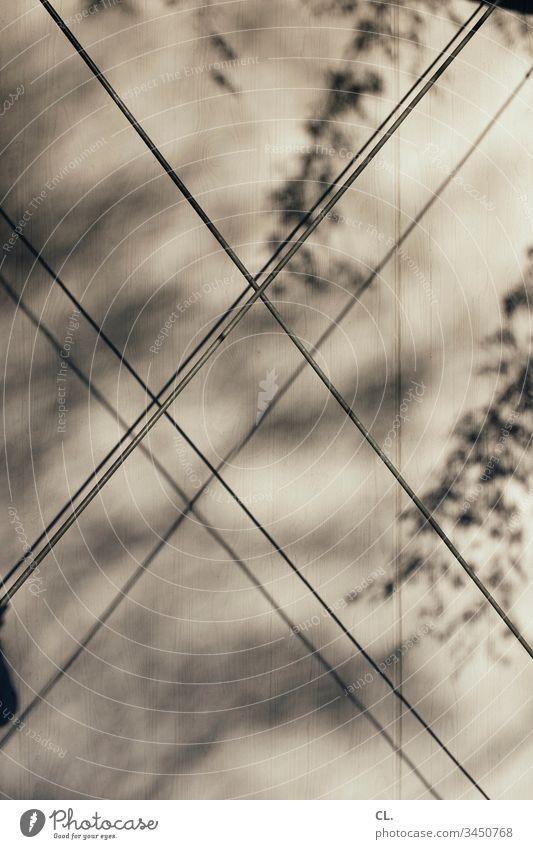 abstraktes Linien Wand Blätter Schatten Schattenspiel Licht Sonnenlicht Abstraktion Menschenleer Außenaufnahme Tag Muster Strukturen & Formen Gedeckte Farben