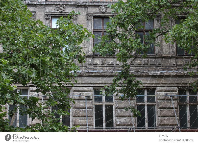 Prenzlauer Berg Berlin Fassade Altbau Oderbergerstraße Haus Fenster Stadt Menschenleer Stadtzentrum Häusliches Leben Wand Mauer Mehrfamilienhaus Wohnhaus