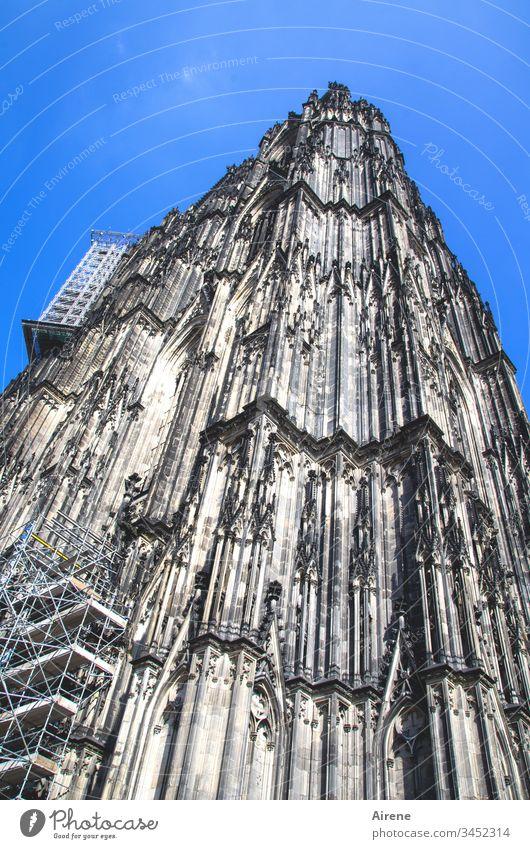 Bau an der Kunst: Renovierungsarbeiten am Kölner Dom Turm hoch Tag blau Menschenleer Religion & Glaube Froschperspektive Blauer Himmel Stadt Hintergrund neutral