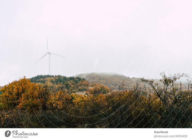 Windkraftanlage im Berg mit Nebel Kraft Energie Berge u. Gebirge Wald Herbst Bäume Turbine Erzeuger Windmühle Sonnenaufgang regenerativ Himmel Sonnenuntergang
