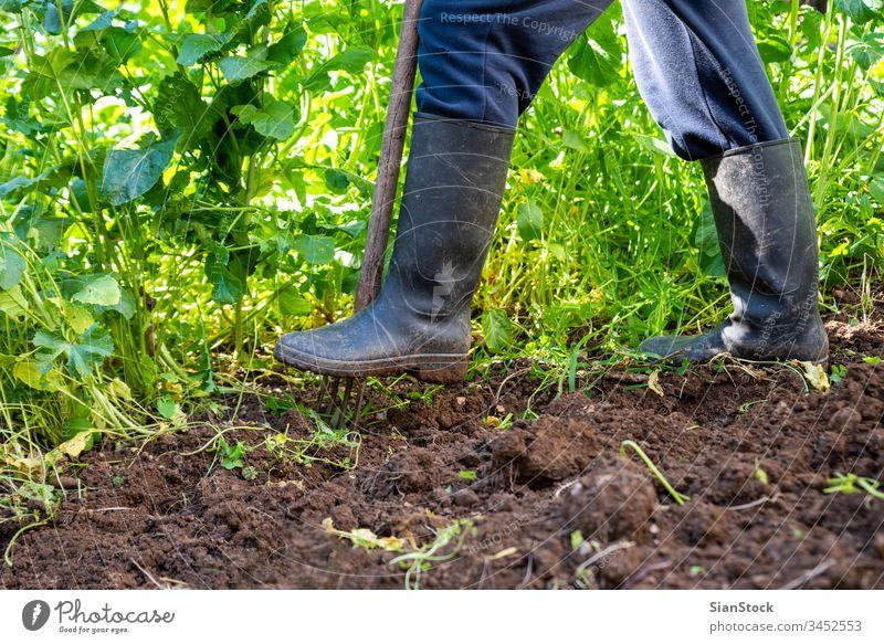 Der Mensch gräbt mit der Spatengabel Federboden aus. Arbeit im Garten Harke Landwirt Mann Stiefel Hobby Bauernhof Ackerbau Schmutz Boden schaufeln Gartenarbeit