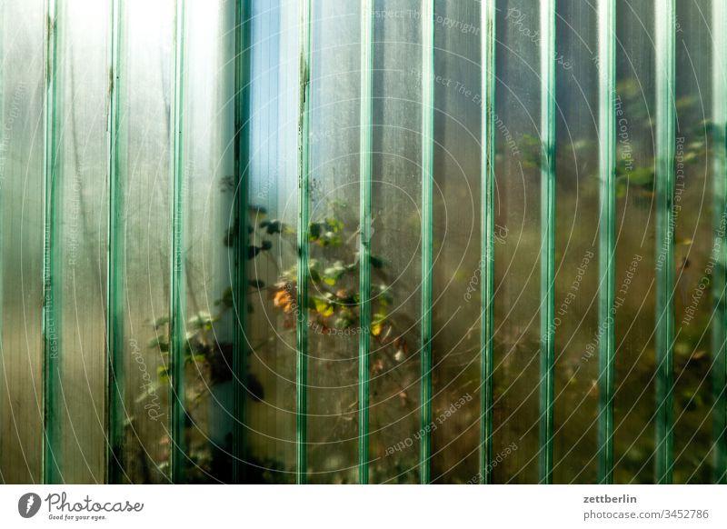 Gläserne Wand außen frühjahr frühling menschenleer textfreiraum grenze mauer glas durchsichtig transparent transluzent grundstück nachbarschaft