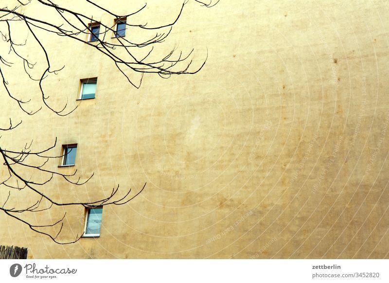 Fenster im Hinterhof altbau außen brandmauer fassade haus hinterhaus hinterhof innenhof innenstadt licht mehrfamilienhaus menschenleer mietshaus schatten