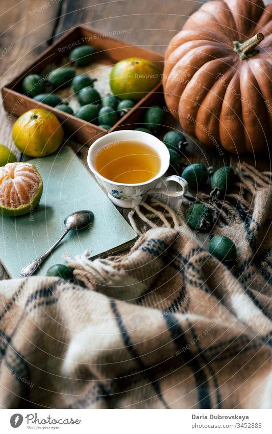 Herbstliches Stilleben. Tee, Kürbis und und kariert Lifestyle fallen Leben Konzept Tasse Hintergrund noch Plaid Saison gemütlich Decke Erntedankfest Oktober