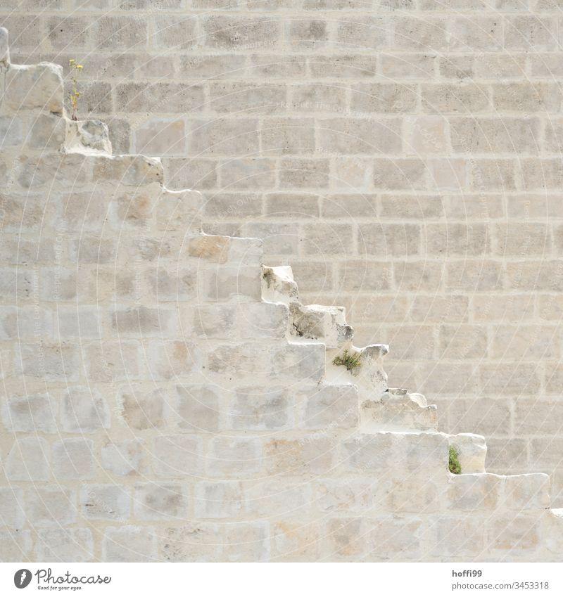 verfallenen Reste einer Treppe Sandstein Sandsteinmauer Historische Bauten historisch Außenaufnahme Architektur Fassade Mauer Altstadt alt Wand Detailaufnahme