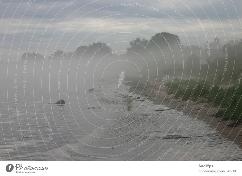 Skane_Küste Wasser Strand Landschaft Nebel Ostsee mystisch Schweden