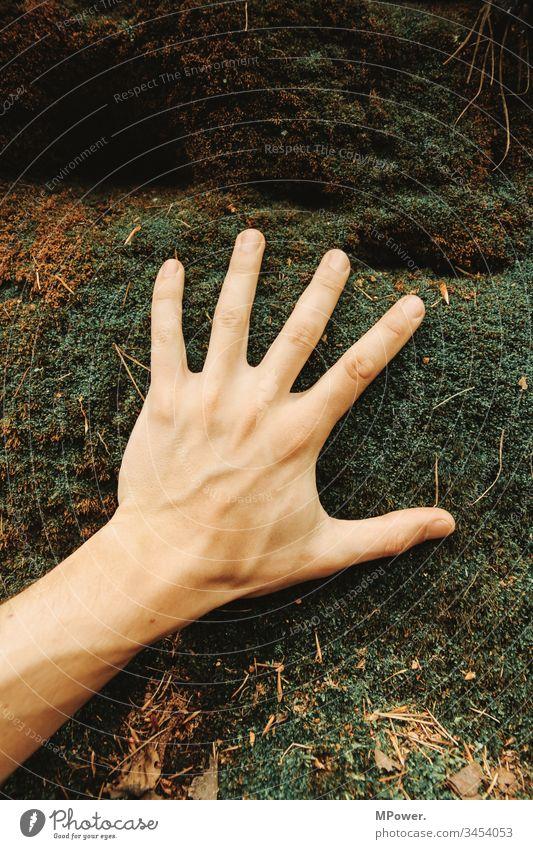 Hand auf moos Natur Moos Wald Außenaufnahme Pflanze grün Farbfoto Makroaufnahme Nahaufnahme Umwelt Detailaufnahme Grünpflanze Finger fühlen erfahren spüren