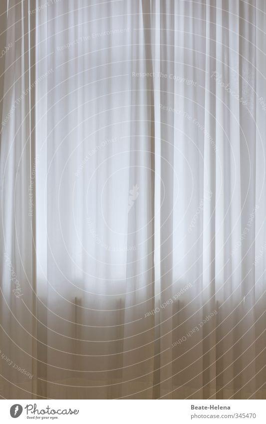 Verdeckte Ermittlungen Fenster Linie Sauberkeit grau weiß Stimmung Verbote Vergänglichkeit Irritation Schleier Faltenwurf Autofenster Vorhang Heizkörper