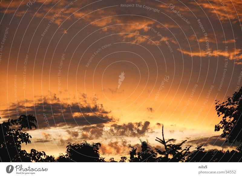 Abendleuchten Himmel Wolken Stimmung harmonisch Abenddämmerung orange-rot