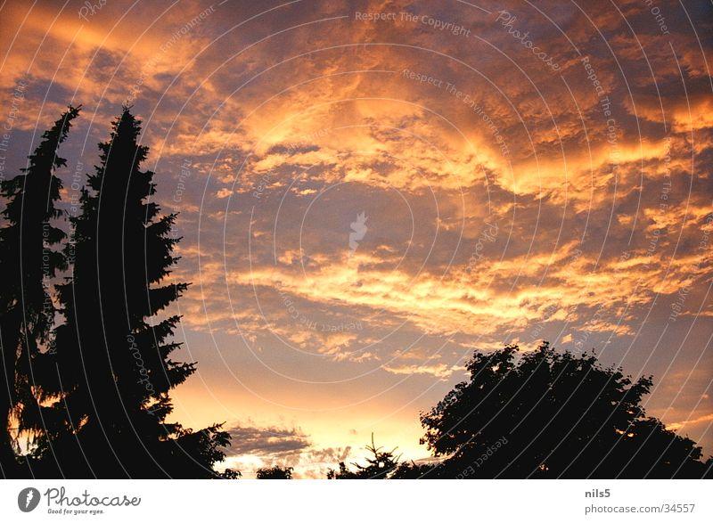 Glühender Himmel Wolken rot harmonisch orange Silhouette Kontrast ruhig Naturwunder Abend