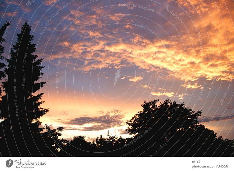 Licht am Himmel Wolken Sonnenuntergang Stimmung Lampe Sky Silhouette Abend Lichtblick