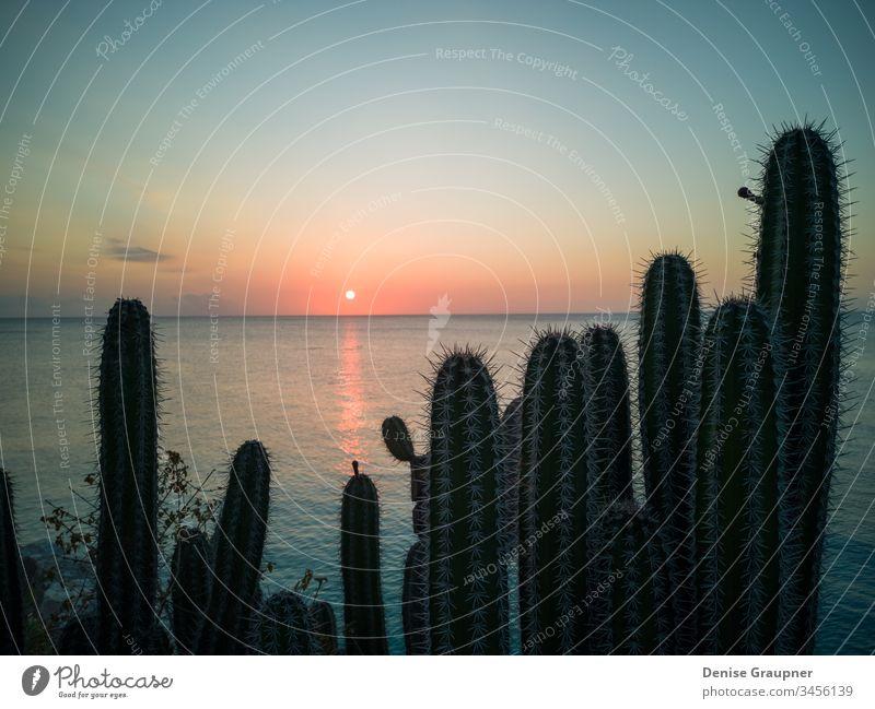 Karibischer Sonnenuntergang auf Curacao-Reisen curacao Karibik Küste Meer Strand Antillen MEER Wasser tropisch Insel holländisch Niederlande Abend Nacht Bucht