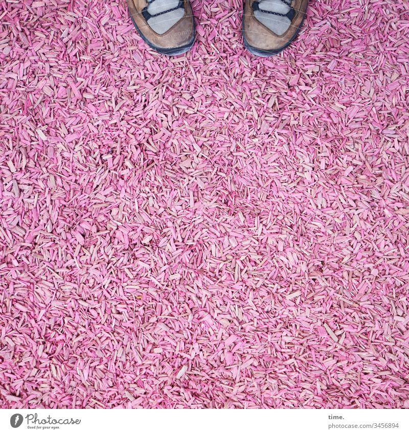 pink below Schuhe füße holzspäne Vogelperspektive rosa bodenbelag kunst überraschung ungewöhnlich