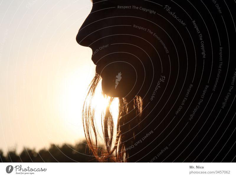 Silhouette einer Frau Gesicht Nase Profil Mund Haare & Frisuren schwarz schön Sonnenuntergang Haarsträhne Wärme Lippen Kopf Kinn Gegenlicht Licht Romantik