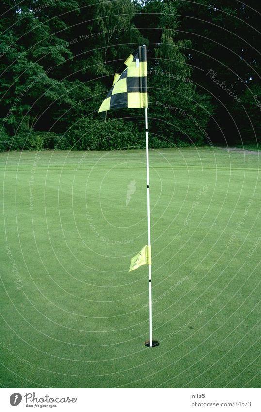 Golffahne Fahne Platz grün Sport Ziel Loch Rasen schwarz/gelb verhaften Wind wehen