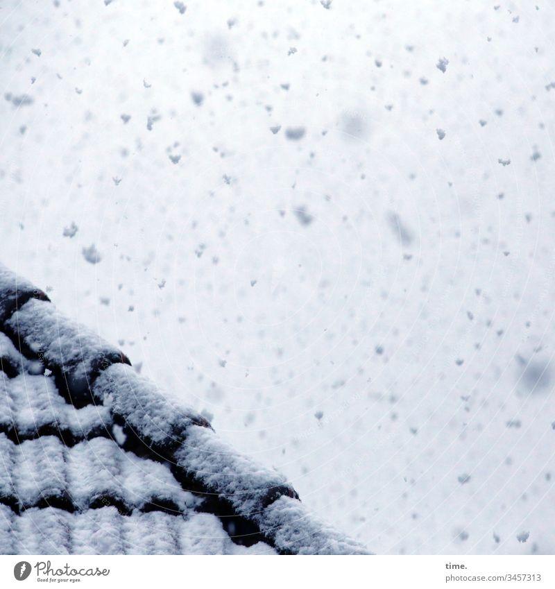 Winter im Frühling, einen Vormittag lang | Klimawandel himmel inspiration schnee winter dach dachpfannen dachziegel schneeflocken schneien schneebedeckt