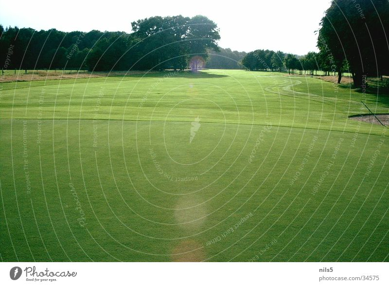 Sommertag Sonne grün Sport hell Platz Golf