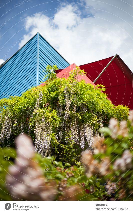 wohlfühl Wohnung Natur Landschaft Pflanze Himmel Sträucher Garten Park Stadt Haus Einfamilienhaus Traumhaus Gebäude Architektur Mauer Wand Fassade Balkon