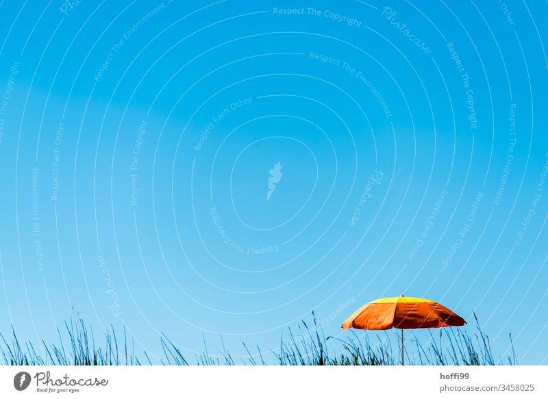orangefarbener Sonnenschirm vor blauem Himmel mit Strandhafer Minimalismus minimalsitisch Nordsee Regenschirm orange-rot Wolkenloser Himmel Blauer Himmel