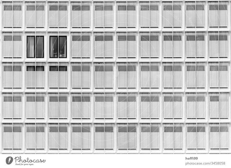 helles Sommerlicht auf moderner Fassade Jalousie Design Bankgebäude rein Architektur Licht Fenster Linie elegant standhaft Ordnungsliebe Genauigkeit