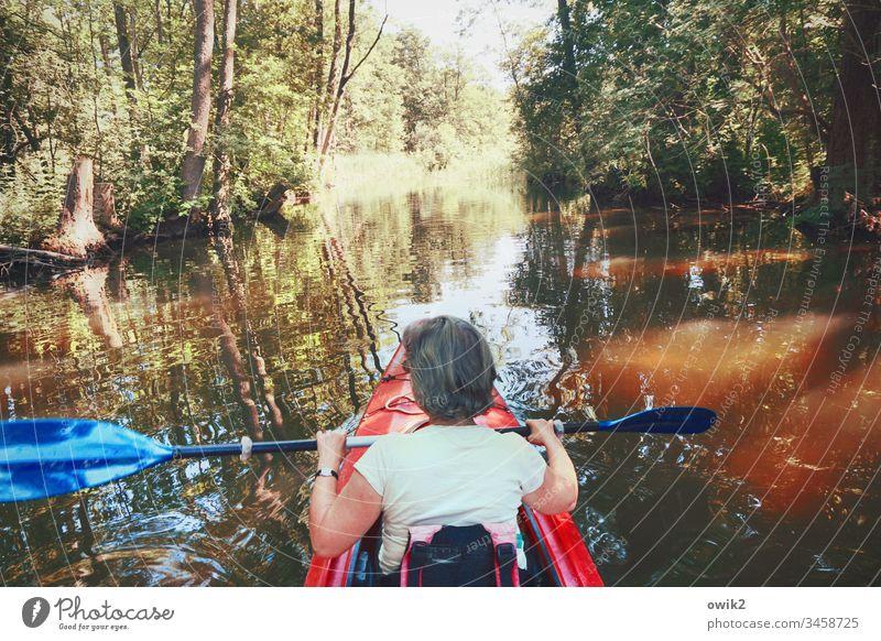 Zurückrudern Frau sport sportlich Freizeit & Hobby Rudern paddeln Kajak Kanu Kanutour Ferien & Urlaub & Reisen Wasser Natur Wassersport Ausflug Sommer