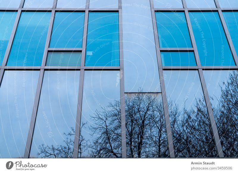 blaue Glasfassade mit spiegelnden Bäumen abstrakt Architektur Hintergrund Gebäude Business Großstadt Konstruktion Unternehmen Design Detailaufnahme Wohnung