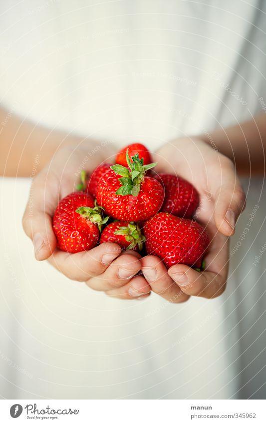 Vitaminbombe Lebensmittel Frucht Erdbeeren Vitamin C vitaminreich Ernährung Bioprodukte Vegetarische Ernährung Diät Fingerfood Hand festhalten genießen leuchten
