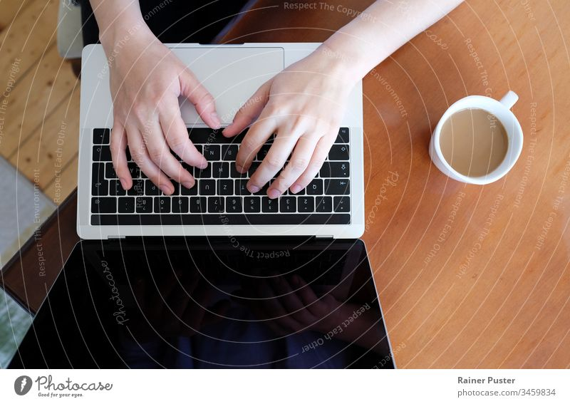 Nahaufnahme der Hände einer Frau, die zu Hause auf einem Laptop tippt Business Kaffee Mitteilung Computer Schreibtisch Unternehmer Freiberufler Heimarbeitsplatz