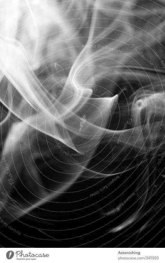 Rauch elegant Streifen Bewegung Rauchen ästhetisch kalt grau schwarz weiß Laster rauchend Kontrast Linie Politische Bewegungen Schwung leicht Nebel