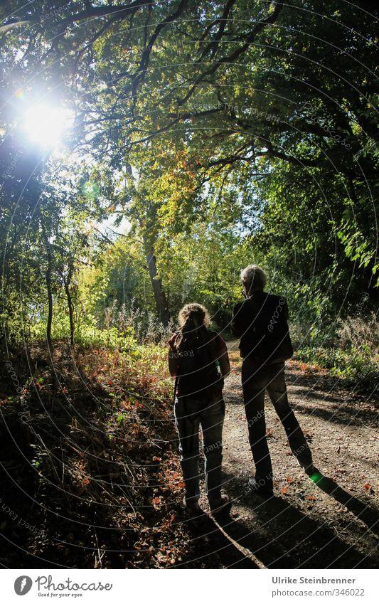 Brother and sister / AST 4 in Sulz Mensch Frau Natur Mann Pflanze Baum Wald Erwachsene Umwelt Herbst feminin Gras natürlich Freundschaft gehen Zusammensein