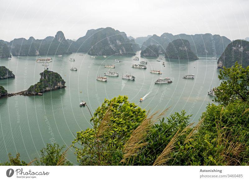 Boote in der Ha Long Bucht, Vietnam exotisch Textfreiraum oben hoch steil Urwald Farbfoto Tag grün Sand Strand Blätter Wald Himmel Kalkstein Ozean Reise schön