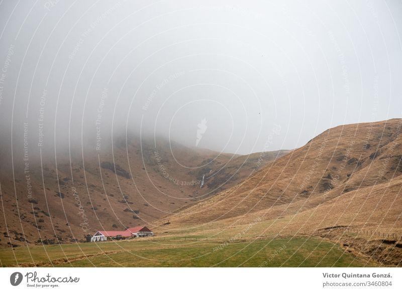 Hügelseitiges Haus in Island Ackerland Morgendämmerung fahren Europa Rundfahrt Nebel Gras Heu Landschaft Licht Wiese Berge u. Gebirge Bewegung Natur