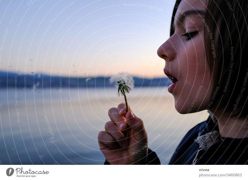 Junge und Pusteblume Nahaufnahme Blume Pflanze Natur Löwenzahn Makroaufnahme Samen Außenaufnahme Detailaufnahme Frühling Farbfoto Menschenleer zürichsee