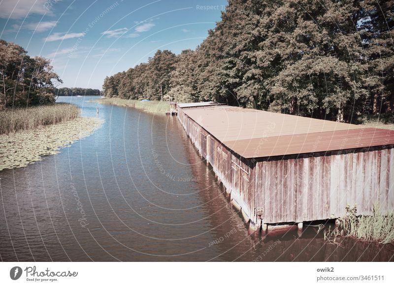 Bek Gewässer Flusslauf Wasserstraße Mecklenburg-Vorpommern Mecklenburgische Seenplatte Wald Bäume Sträucher fließen ruhig Idylle Bootshaus Reihe alt Blechdach