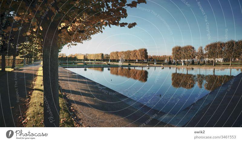 Barockes Planschbecken Park Hannover Teich Wasser friedlich still Windstille Ruhe Idylle Umwelt Baum Landschaft Reflexion & Spiegelung Außenaufnahme Natur