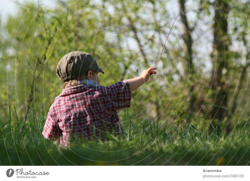 Da! Mensch maskulin Kind Kleinkind Junge 1 1-3 Jahre Natur Baum Gras Wiese sitzen niedlich zeigen Farbfoto Textfreiraum rechts Textfreiraum unten Tag Wegsehen