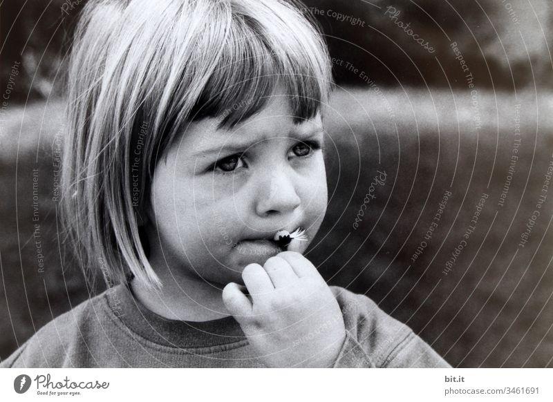 Mädchen isst Gänseblümchen im Garten spielerisch süß Leben Erziehung Kindererziehung Kinderspiel Porträt Denken Sorge besorgt Traurigkeit traurig Kindheit
